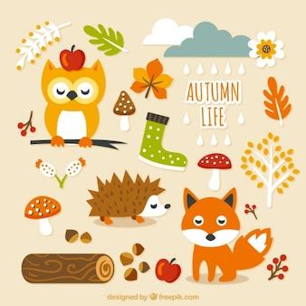 かわいい秋の生活