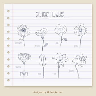Эскизные цветы