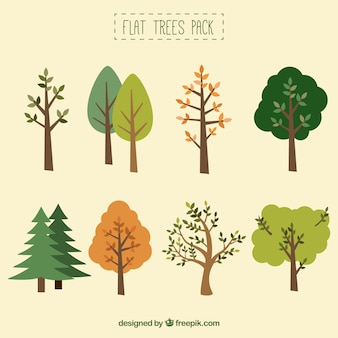 平らな木のコレクション