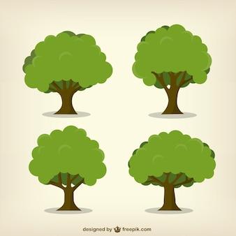 Лиственных деревьев