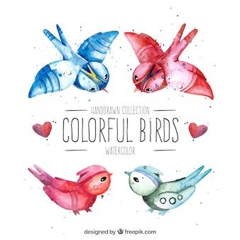 水彩カラフルな鳥