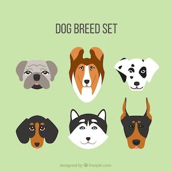 フラットなデザインに設定された犬の品種