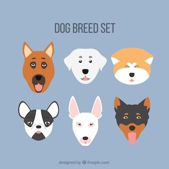 犬の品種のアバターコレクション