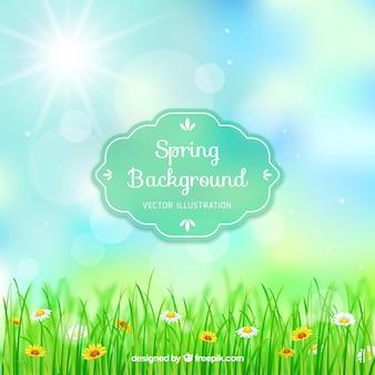 Весна фон