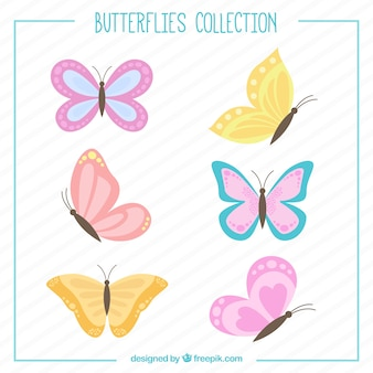 設定手描き蝶