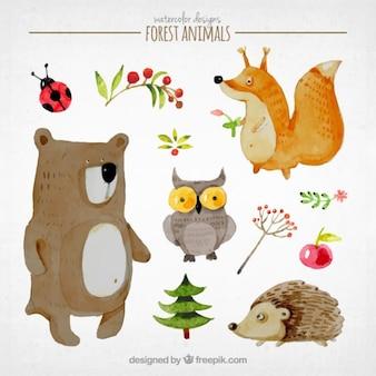 Прекрасный рассказ набор животных