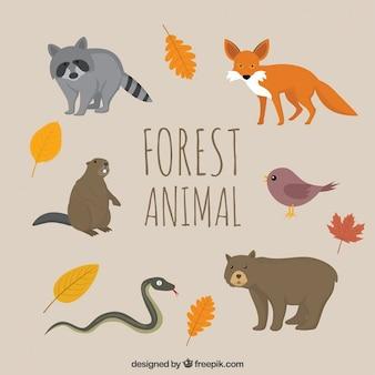 紅葉と手描き森林動物