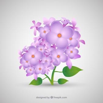 Простой букет с сиреневые цветы