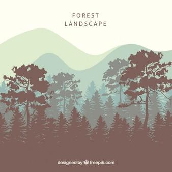 木のシルエットと森林景観の背景