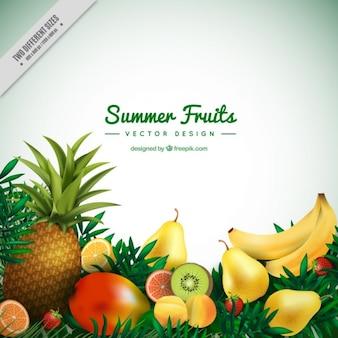 夏のトロピカルフルーツの背景