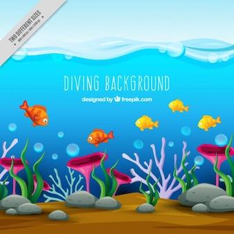 海の生物の下で