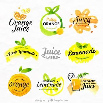オレンジとレモンのラベル