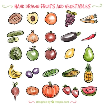 手描きの野菜や果物の様々な