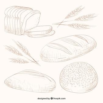Зарисовки разнообразие сортов хлеба