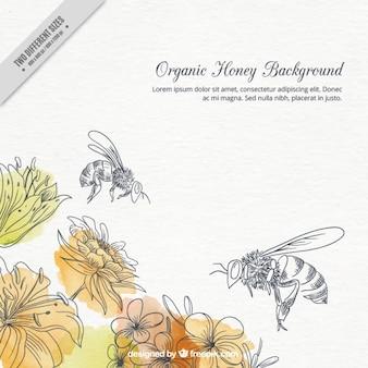 手描きの水彩画の花とミツバチの背景