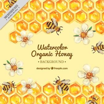 花とミツバチの背景と手描きハイブ