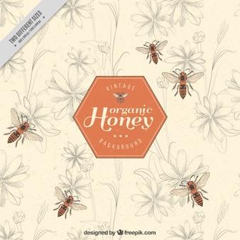 ミツバチのエレガントな蜂蜜の背景