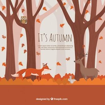 愛らしい動物と紅葉の森の背景