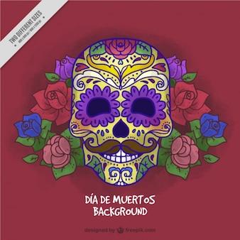 Хороший мексиканский череп, чтобы отпраздновать день мертвых