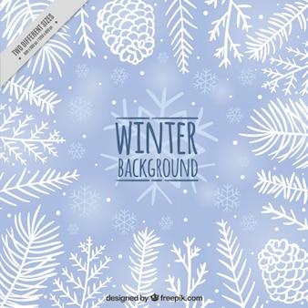 松ぼっくりや手描きの葉かわいい冬の背景