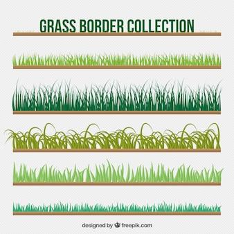 いくつかの草の境界線