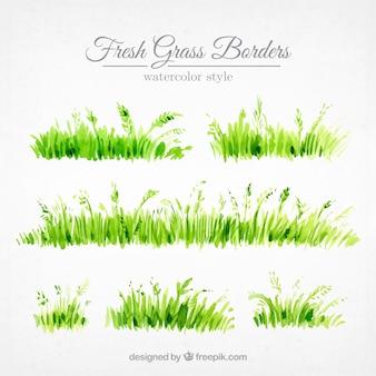 水彩画で描いた草の境界線のセット