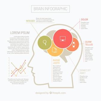 グラフとカラフルな丸フラット脳のインフォグラフィック