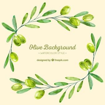 緑の色調でオリーブの枝の背景