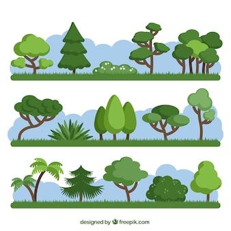 Упаковка из различных зеленых деревьев