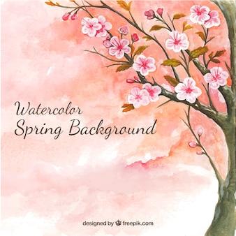 桜と水彩画の背景