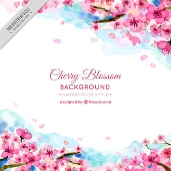 水彩画の桜のきれいな背景