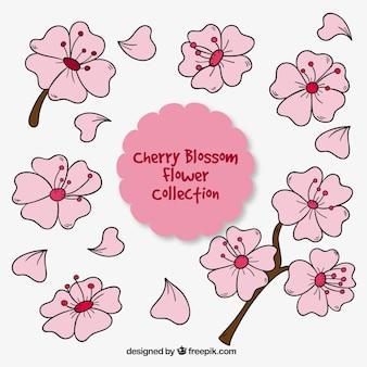 Довольно розовые рисованной цветы