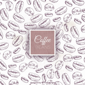 コーヒー豆の背景のスケッチ