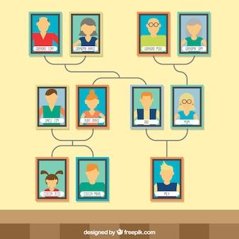 カラフルなフレームを持つ近代的な家系図