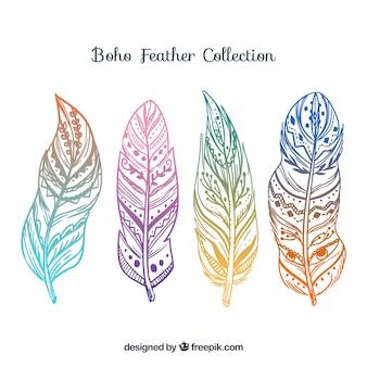 色のついたボウの羽のコレクション