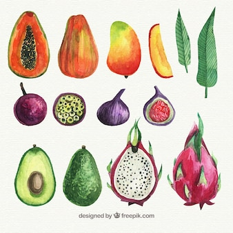 Набор фруктов с акварелью