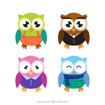 Четыре цветных совы в плоском дизайне