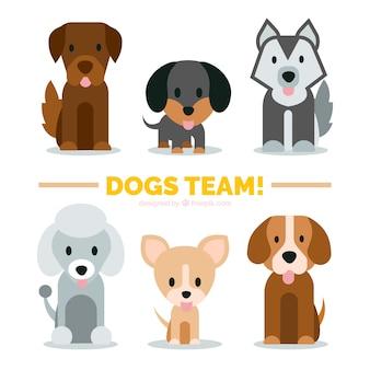 Разнообразие симпатичных щенков в плоском дизайне