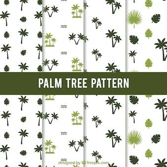 Набор узоров пальмовых деревьев