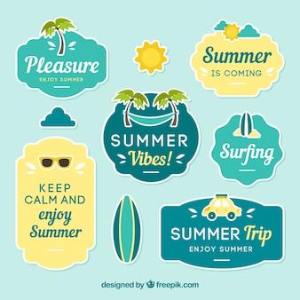 装飾品と夏のラベルのパック