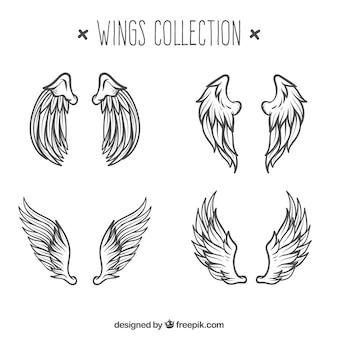 天使の羽のスケッチのパック