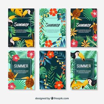 花の夏のカードのパック