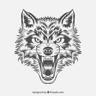 激しいオオカミの顔