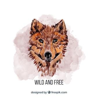 水彩画オオカミの顔