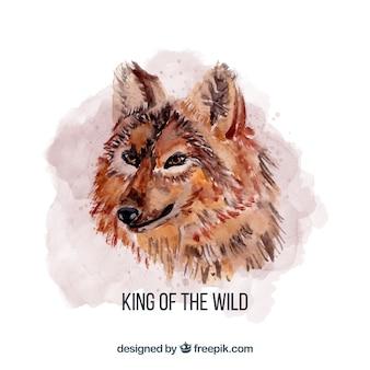水彩キングオオカミ