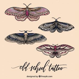 図解された蝶のセット