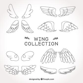 翼のスケッチのコレクション