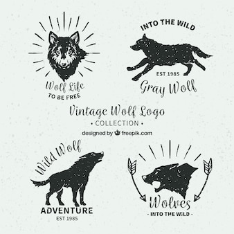 手で描かれたオオカミのロゴのレトロパック