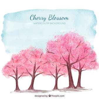 水彩スタイルの桜の背景