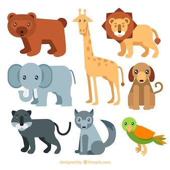 Прекрасные животные с плоским дизайном